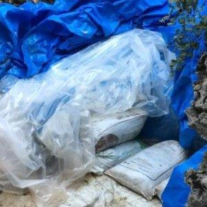 Tunceli'de mühimmat yakalandı
