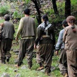 """Alman mahkemesinden skandal """"PKK"""" kararı"""