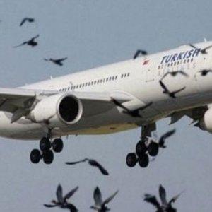 THY uçağında panik anları !