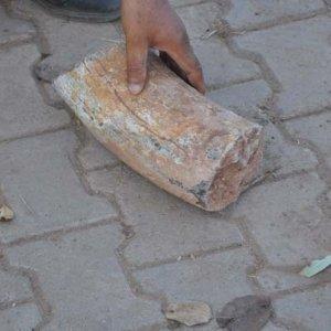 Tarlada fil dişi fosili bulundu
