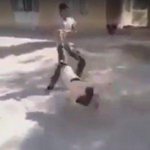 Köpeğe işkence görüntüleri tepki topladı