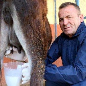 Eşek sütü üreticisi isyan etti