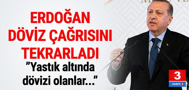 Cumhurbaşkanı Erdoğan'dan TL çağrısı