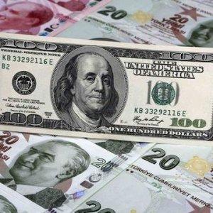 İşte Erdoğan'ın dolar çağrısına uyan kurumlar