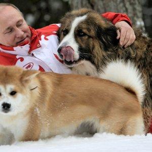 Putin'e köpek hediyesi