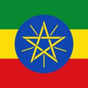 Etiyopya FETÖ okulunda ağırladı