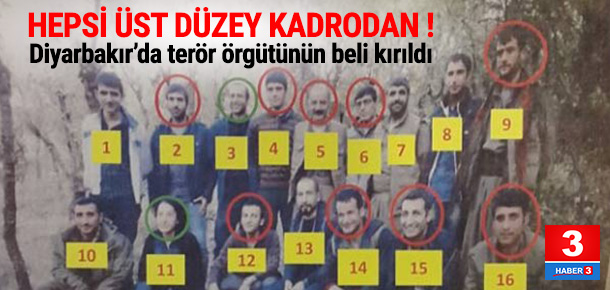 Diyarbakır'da PKK'ya ''üst düzey'' darbe