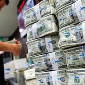 Merkez Bankası dolar tahminini açıkladı