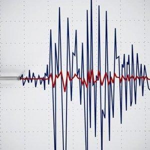 7.9 büyüklüğünde depremle sallandılar !