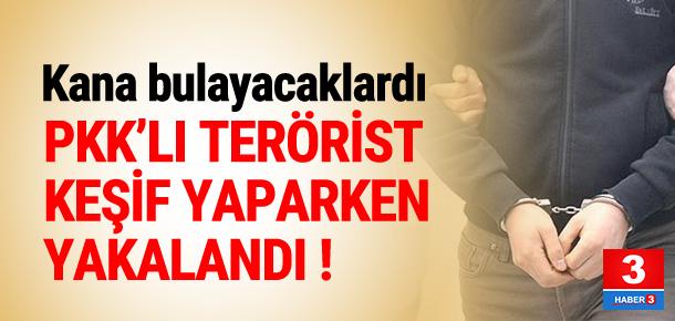 PKK'lı terörist keşif yaparken yakalandı