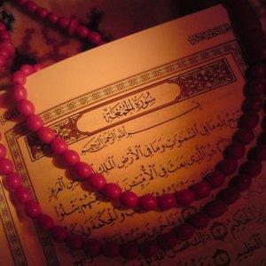 Kur'an-ı Kerim yakan Danimarkalı hakkında şok karar