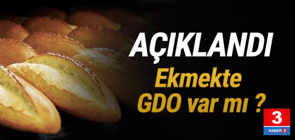 Ekmekte yapılan test sonuçlandı. Peki GDO çıktı mı ?