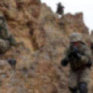 Bitlis'te 12 PKK'lı terörist öldürüldü