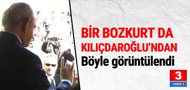 Kılıçdaroğlu'ndan Bozkurt selamı