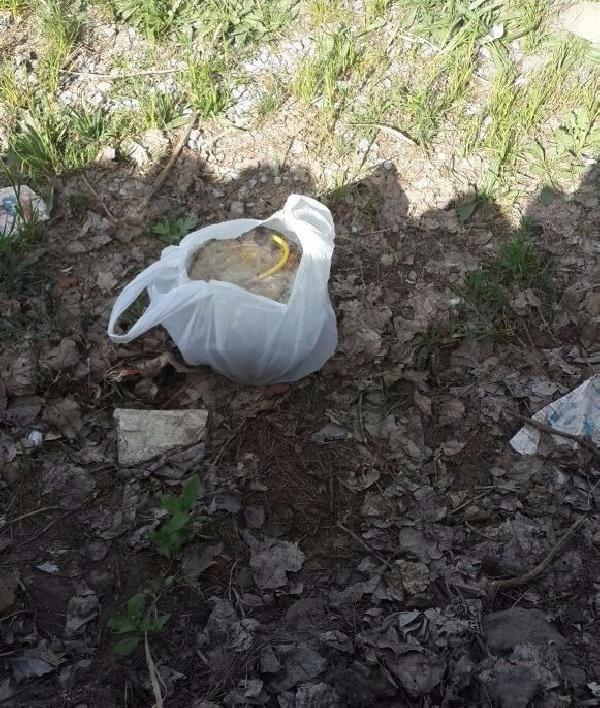 Güroymak'ta Çocukların Bulduğu Paketten Bomba Çıktı