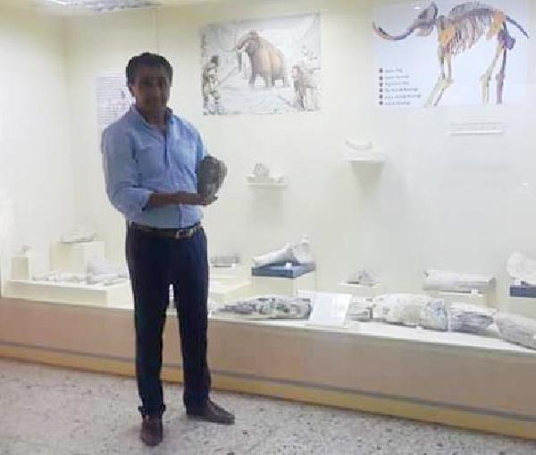 Mamuta ait fosil diş bulundu