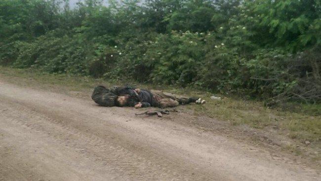 Ordu'da 1 terörist öldürüldü