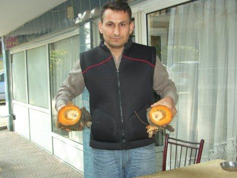 DÜZCE'DE MUCİZEVİ OLAY